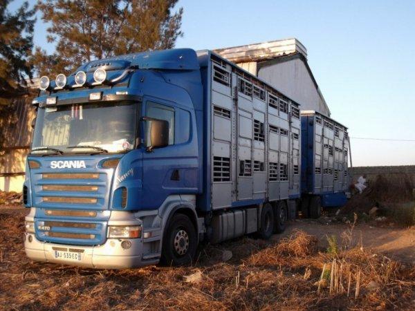 Arrivés tôt le matin, les conducteurs ont attendu l'ouverture de la douane marocaine.