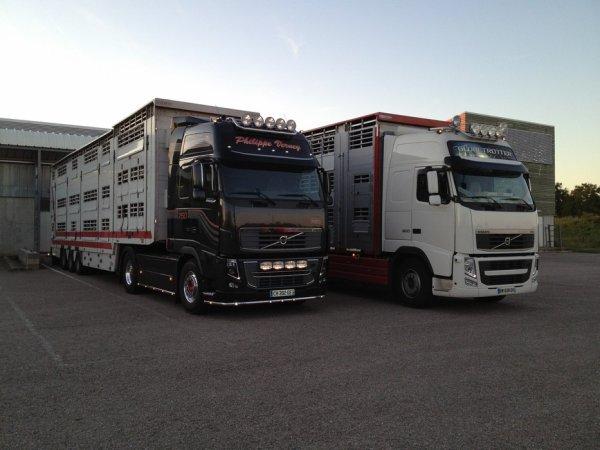 Deux Volvo FH16 en liens étroits avec l'article sur l'export des limousines.