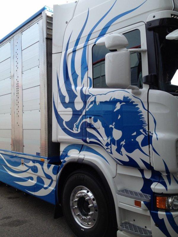 Scania R730 de la société de commerce en bestiaux Strava de Xertigny (88).
