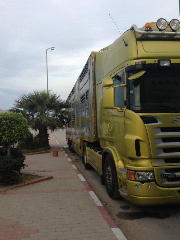 Pas si dépaysant de rouler en Tunisie où la signalétique semble universelle.