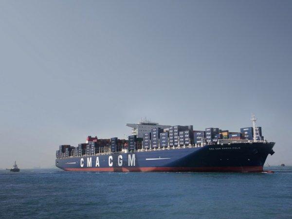 Sans animaux, le retour au port français se fera dans le garage du navire.