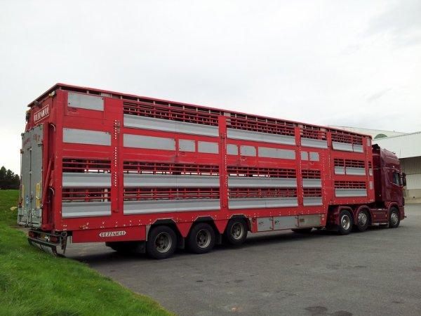 Quelques nouveautés sur les camions de Baudouin transports de Caulnes (22).