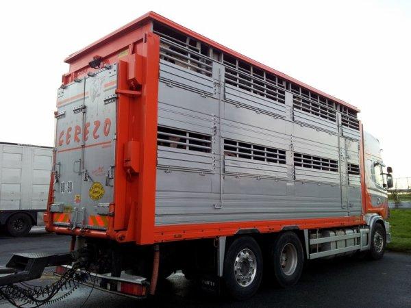 Superbe Scania 164L 480 des transports Cerezo de Hasparren (64).