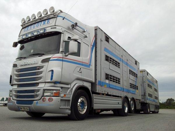 Autre Scania R620, ce camion remorque est généralement aux mains de Freddy.