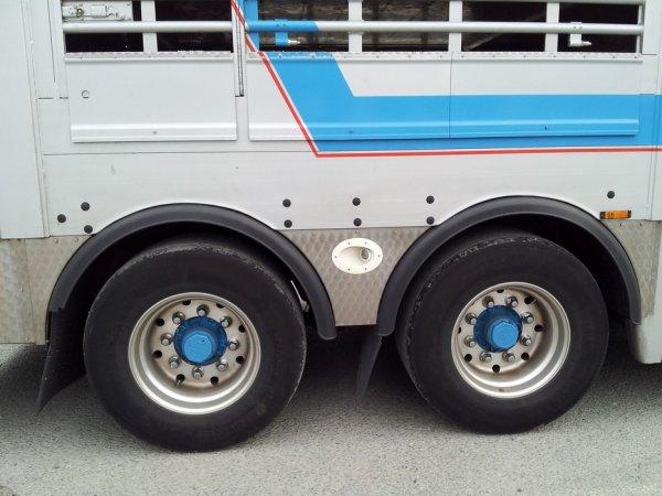 Cet ensemble à six essieux devait satisfaire aux 44 tonnes : Coup de théâtre.