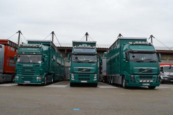 Trois camions des transports Philippon (42) au marché de Bourg-en-Bresse (01).