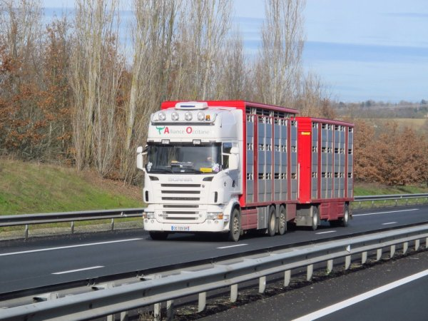 Alliance Occitane (32), un négociant qui réalise également des transports.
