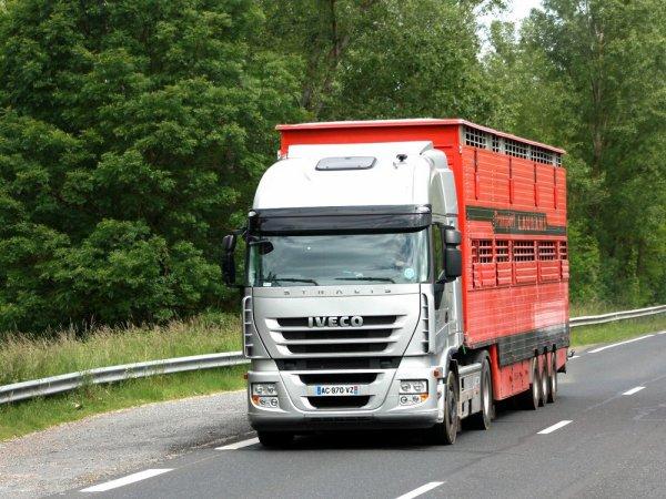 Escale en Aveyron dans différentes sociétés de transport et de négoce.