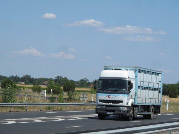 Deux camions belges avant de se rediriger gentiment vers les français.