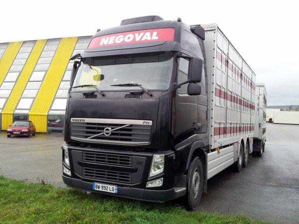 Volvo FH13 500 de la société Negoval. Le siège est situé à Fougères (35).