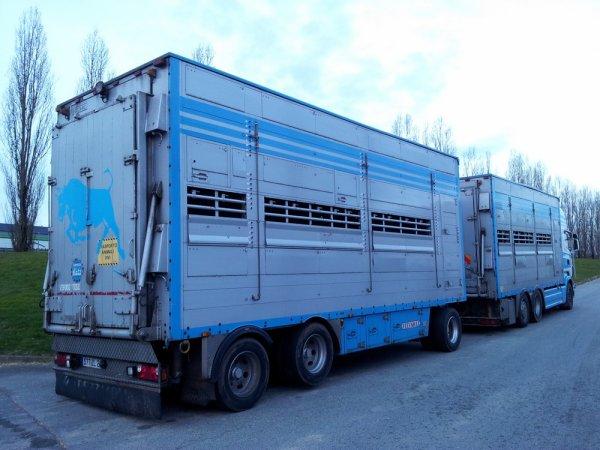 Scania R620 des transports CMKL Bouhours installés à Franqueville (27).