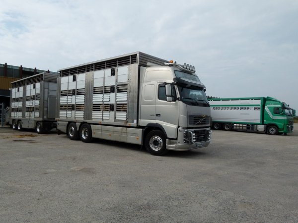 Volvo FH16 600 des transports Jean-Luc Gillois installés à Athée (53).