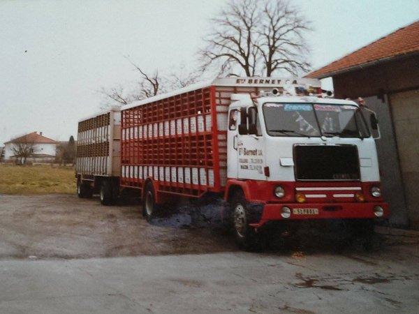 Enchaînons avec la société de négoce de porcs Massard de Vonnas (01).