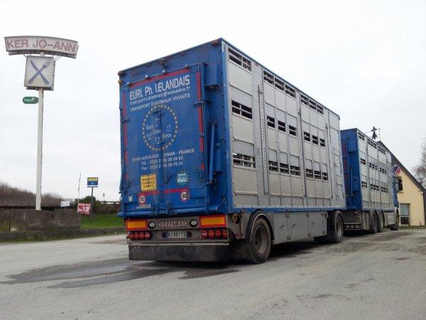Camion remorque Scania R500 des transports Lelandais de La Landec (22).