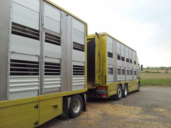 Scania R620 du transporteur Christophe Gargaud installé à Eyliac (24).