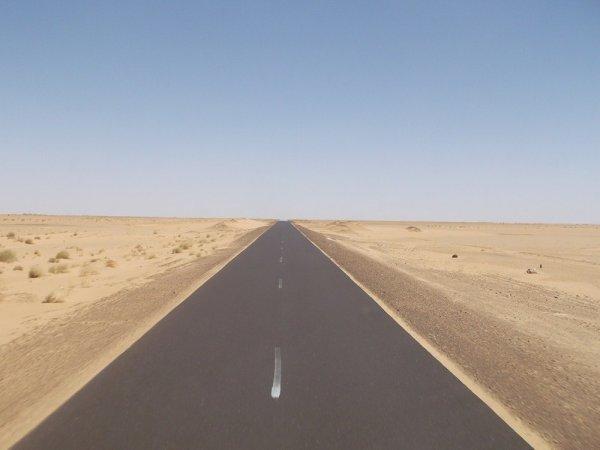 La Mauritanie révèle son lot de surprises en fonction des zones traversées.