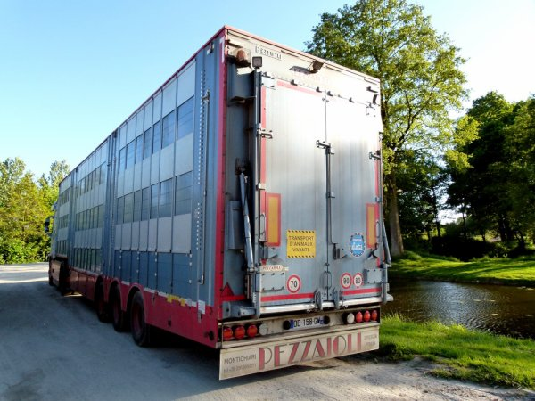 Volvo FH13 540 Re 'zo Re des transports David Gourlaouen de Loudéac (22).