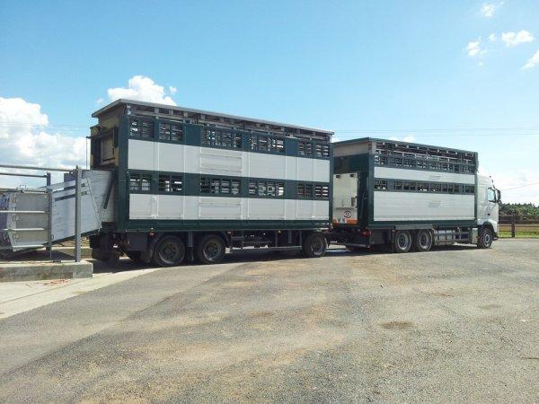 Réapparition furtive au marché de Châteaubriant (44) pour deux camions.