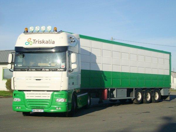 2011, l'année d'entrée de Jean-Baptiste au service transport chez Triskalia.