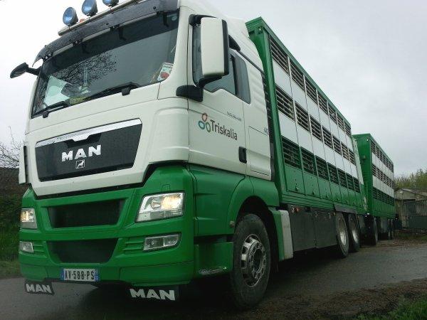 Camion remorque Man TGX 28.480 qui a été remplacé par une semi depuis.