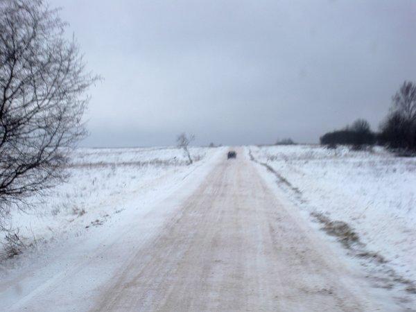Tout au bout du long chemin blanc, une immense porcherie flambant neuf.