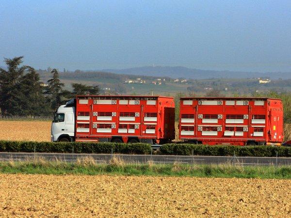 Poursuivons le tour de France du Nord à l'Est pour atterrir en Auvergne.