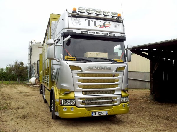 Scania R560 Streamline des transports Gargaud Christophe de Eyliac (24).
