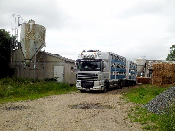 Pouteau (53), Cooperl (22), Prestor (29) : Trois entreprises fidèles à Guitton.