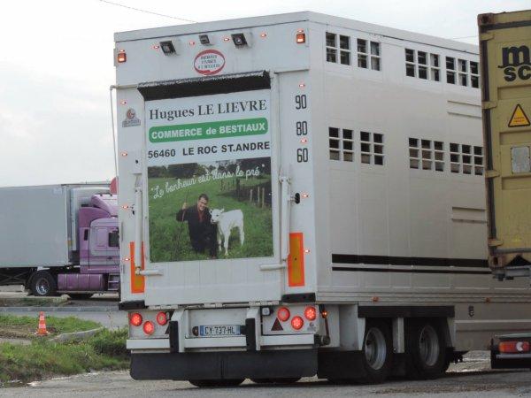 Trois camions remorques des négociants R. Béchet (50) et H. Le Lièvre (56).