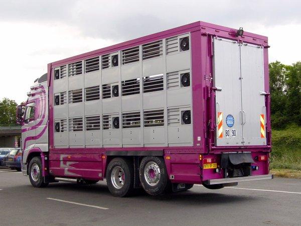 Passons en revue quelques porteurs à trois niveaux destinés aux porcs.