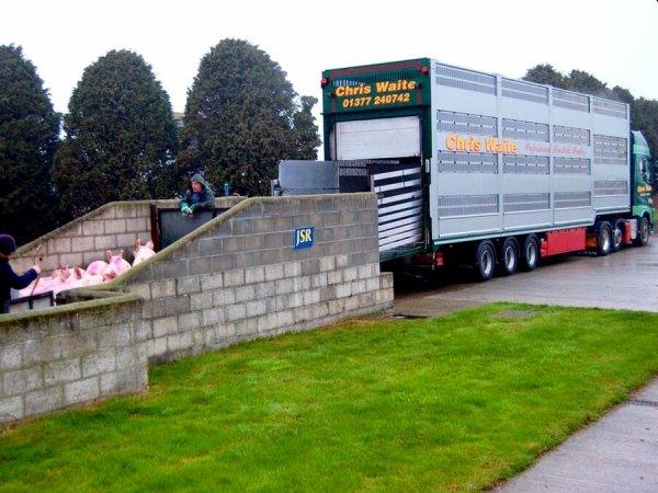 Le matériel des transports Chris Waite (UK) à travers les modes et les années.