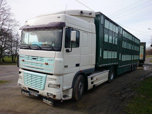Une semi et un camion remorque de la société d'appro. des abattoirs (49).
