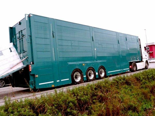 L'Allemagne et sa hauteur limitée à quatre mètres exige un matériel adapté.
