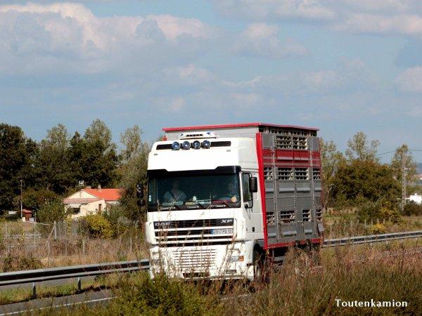 Nouveau partage de photos du tarnais Dominique alias Toutenkamion.