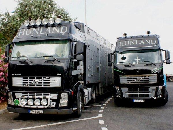Hunland Trade, une entreprise de négoce d'animaux localisée à Bugyi (H).