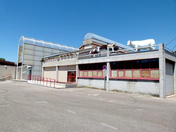 Visite du marché aux bestiaux de la Chambière près de Bourg-en-Bresse (01).