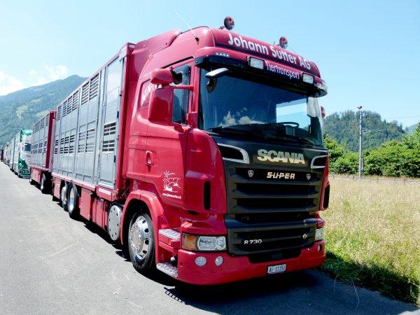 Scania R730 à Johann Sutter d'Appenzell & Scania R480 à Animaltruck de Necker.