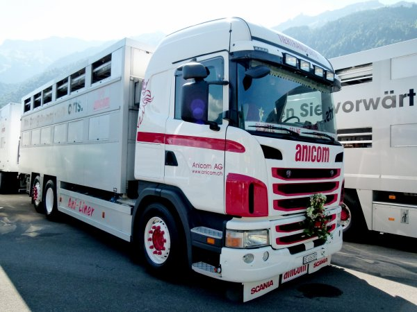 Une partie de la trentaine de camions du commerçant d'animaux Anicom (CH).