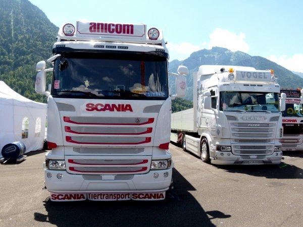 Interlaken 2015 - Trois autres camions à Anicom et un à Alex Desmeules (CH).