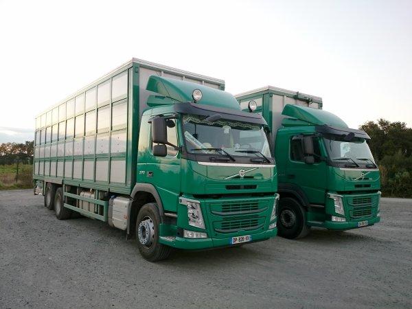 Scania R440 à Porc Armor (35) et deux Volvo New FM aux transports Guevel (29).