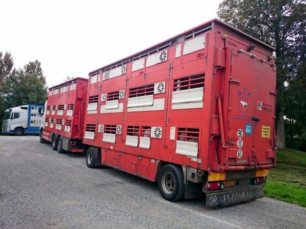 De la bétaillère et du matériel agricole aperçus à l'Auberge de Moutiers (35).