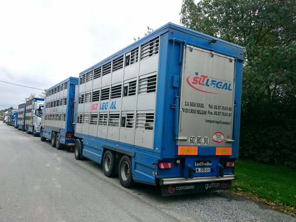 Plusieurs ensembles des transports SLT Legal de La Croix-Helléan (56).