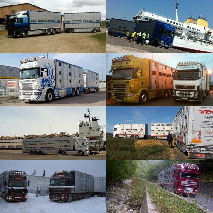 Un blog de camions, un parmi tant d'autres...