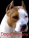Photo de Dog-Company