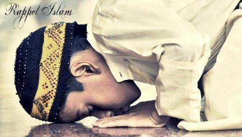 As Salem Aleykûm wa RahmatoulLah wa Barakatûh. ♥