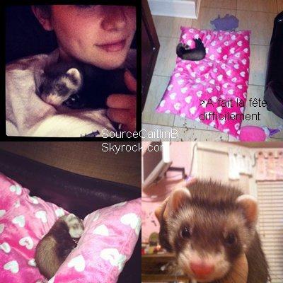 Photos postées par Caitlin sur Instagram
