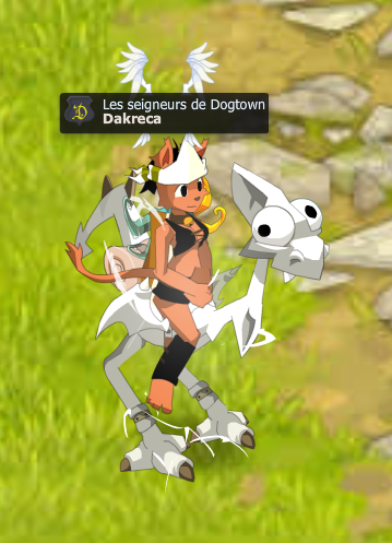 -Dakreca of the Dofus-