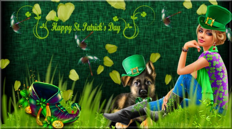 Bonne fête de la St Patrick's