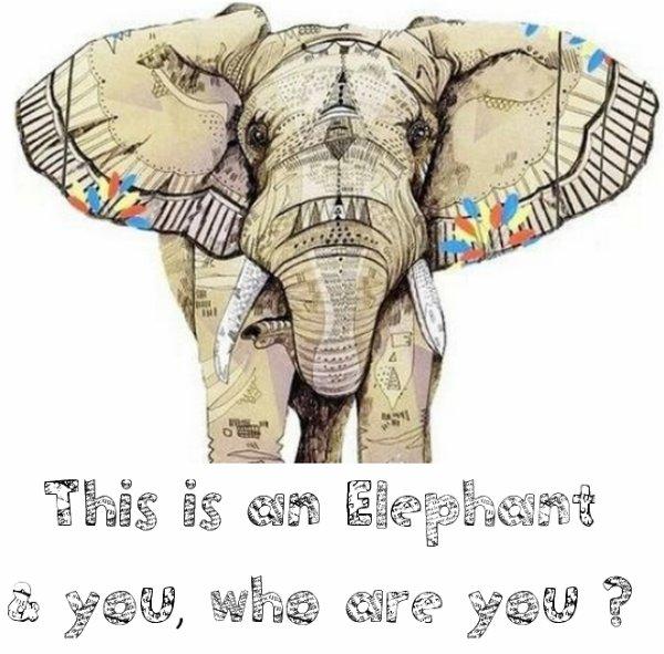 Un éléphant qui se balançait... ♪