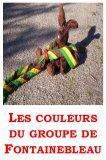 Photo de eclaireurdefontainebleau